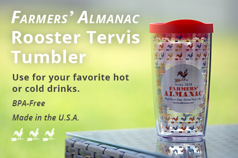 Rooster Tervis Tumbler